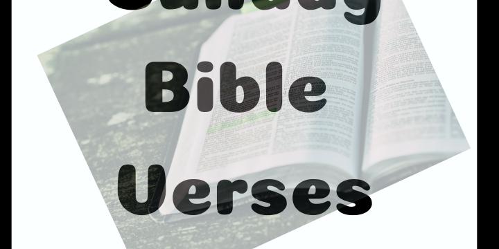 Bible Verses: Luke